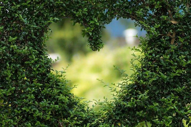 Поздравления с Днём Святого Валентина в стихах
